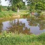Pond Construction Garden Ponds - Pagan Plant