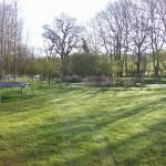 Pond Construction in Hurst Green
