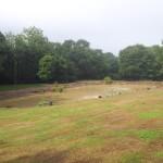 Pond Construction in Tunbridge Wells