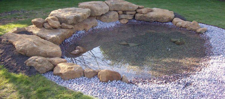Pagan Plant Pond & Lake Construction Garden pond design and ...